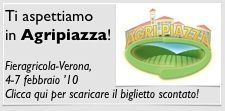 Image Line in Agripiazza